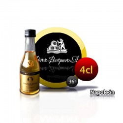 Bouteille brandy Napoleon