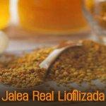 Jalea Real Liofilizada: un producto de múltiples beneficios