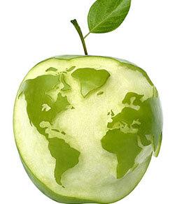 Este día se lucha por la correcta alimentación del mundo.