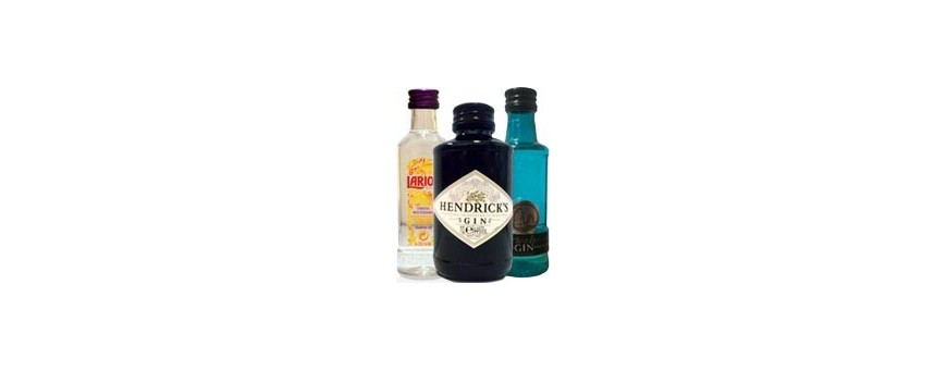 Bottles Bouteilles miniatures de gin et gin tonic pour les mariages 【In Kit and Pack】