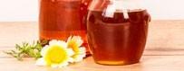 Buy single-flower honey of Spain. Natural honey and pure honey.