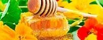 Buy multi-flower honey from Spain in our online store