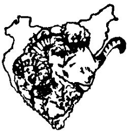 Soc. Coop. Ltda. Comarcal Agrícola Ganadera Torta de la Serena